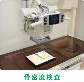 骨密度検査